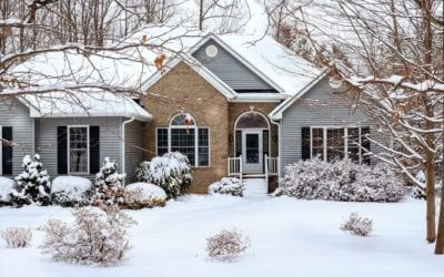 5 Reasons You Still Need Pest Control to Protect Your Home for a Maine Winter
