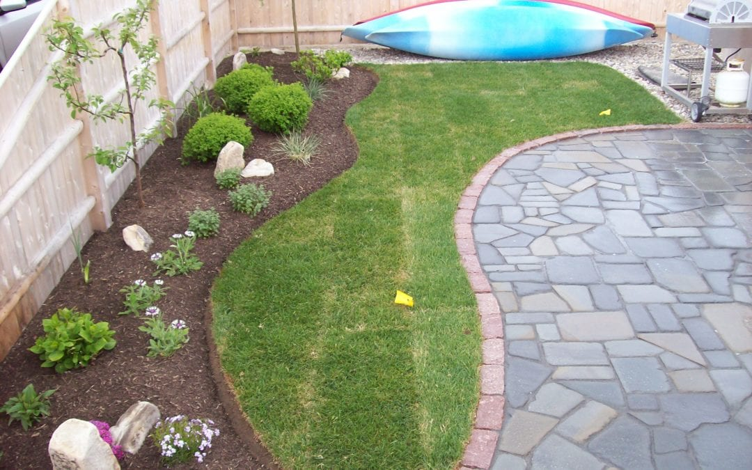 Blue Stone Patio with landscaping