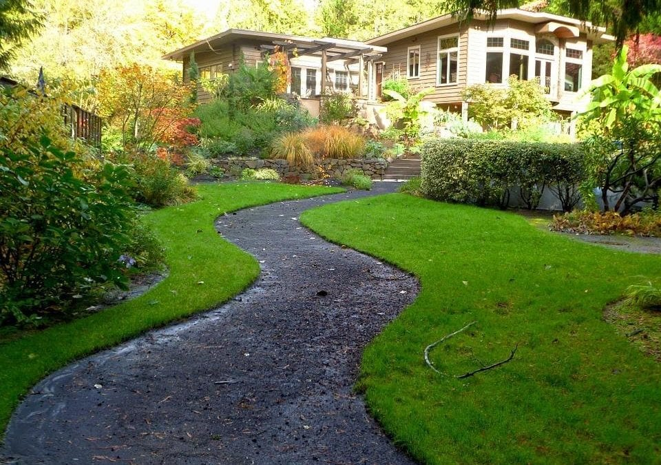 A lush, green garden with a clear pathway.