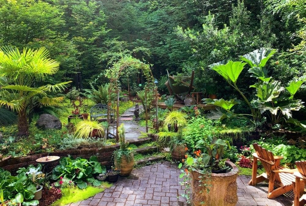 6 Landscaping Mistakes You Need To Avoid